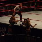 WWE RAW029